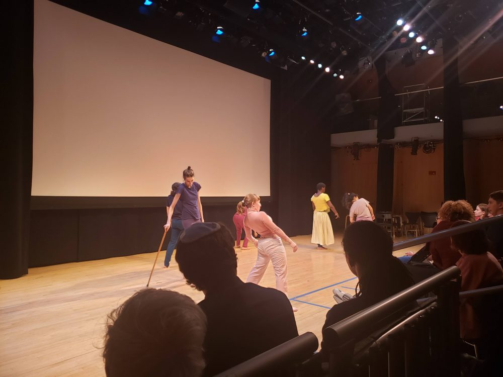 The Accessible Dispatch team attends a dance performance at ReelAbilities..