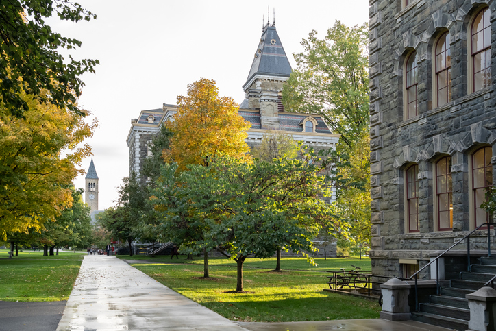 Cornell University is a private and statutory Ivy League research university.