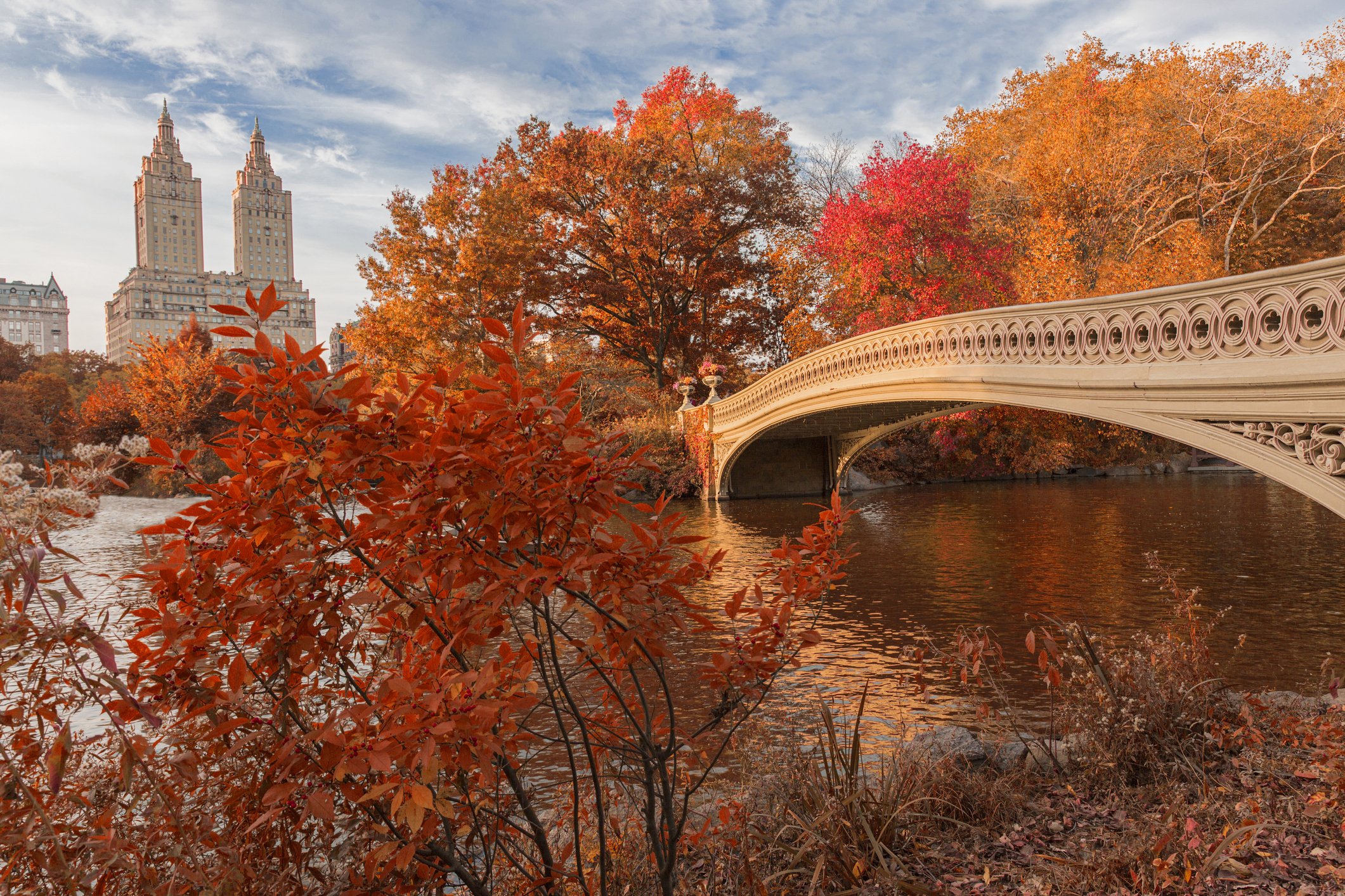 Bow Bridge in Central Park at New York City during autumn